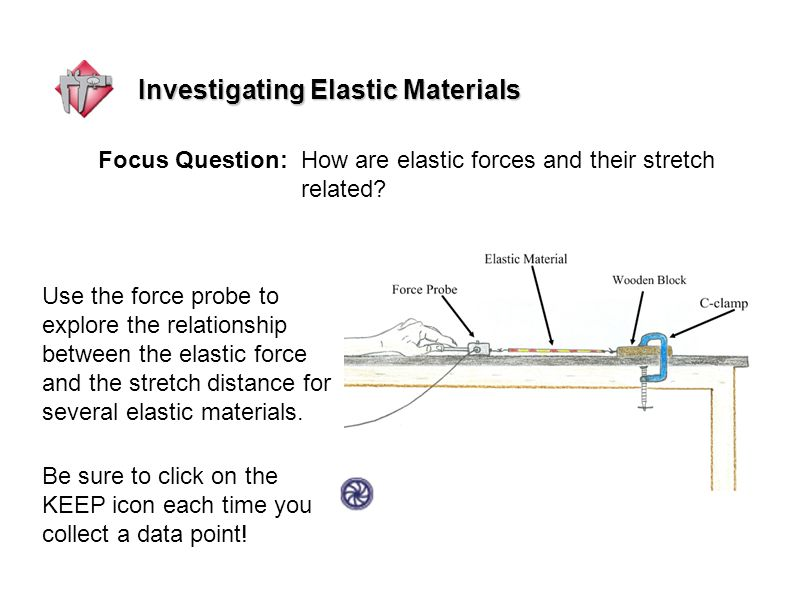 Investigating Elastic Materials Use the force probe to explore the relationship between the elastic force and the stretch distance for several elastic materials.