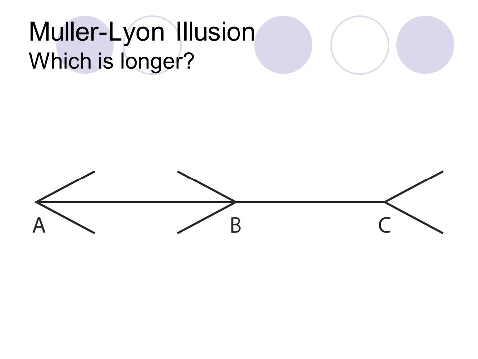 Muller-Lyon Illusion Which is longer?