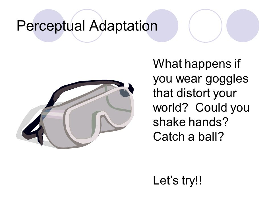 Perceptual Adaptation What happens if you wear goggles that distort your world? Could you shake hands? Catch a ball? Let's try!!