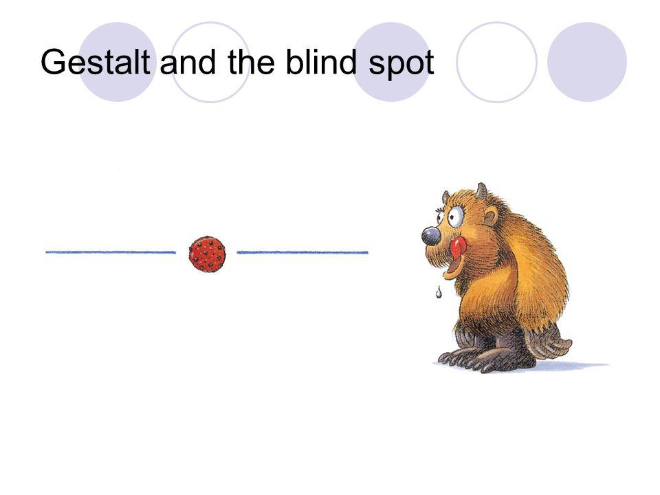 Gestalt and the blind spot