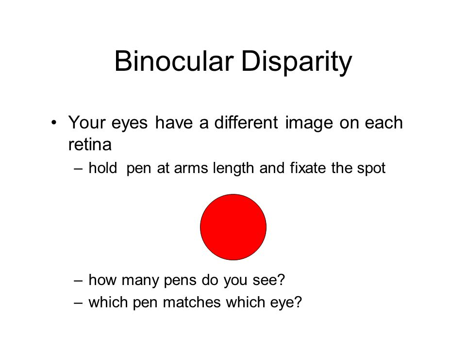 Binocular Disparity Your eyes have a different image on each retina –hold pen at arms length and fixate the spot –how many pens do you see? –which pen