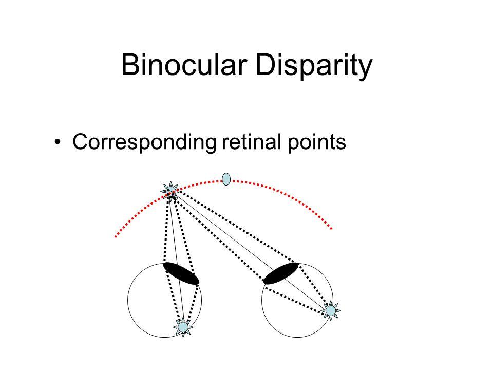 Binocular Disparity Corresponding retinal points