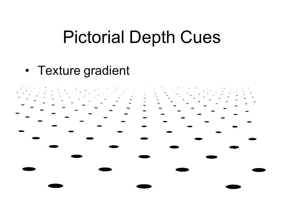 Texture gradient Pictorial Depth Cues