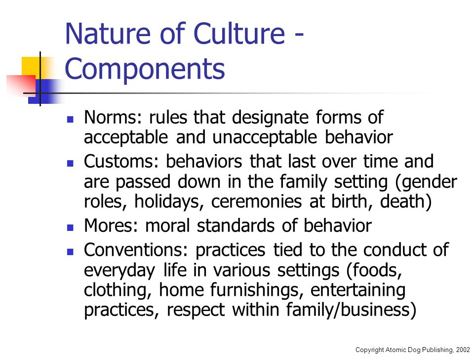 Copyright Atomic Dog Publishing, 2002 Nature of Culture - Components Norms: rules that designate forms of acceptable and unacceptable behavior Customs