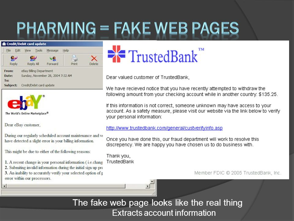 The fake web page looks like the real thing Extracts account information