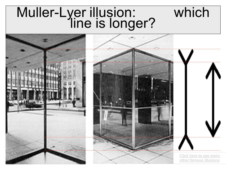 Muller-Lyer illusion: which line is longer Click here to see many other famous illusions