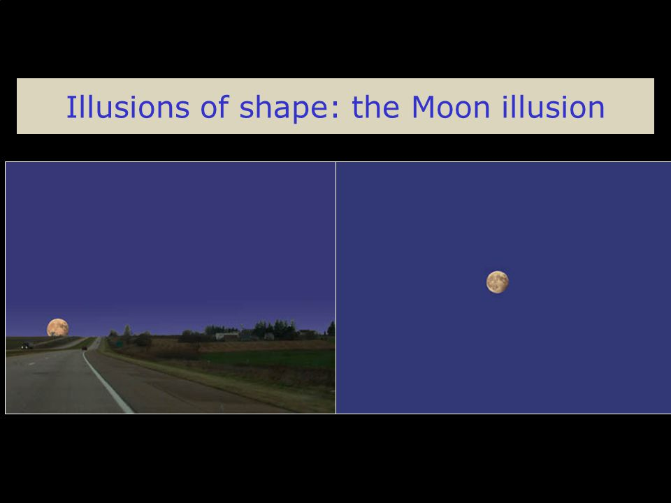 Illusions of shape: the Moon illusion