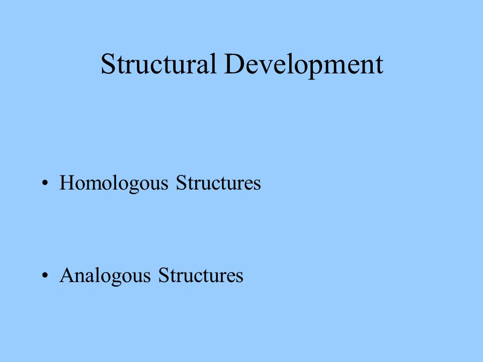Structural Development Homologous Structures Analogous Structures