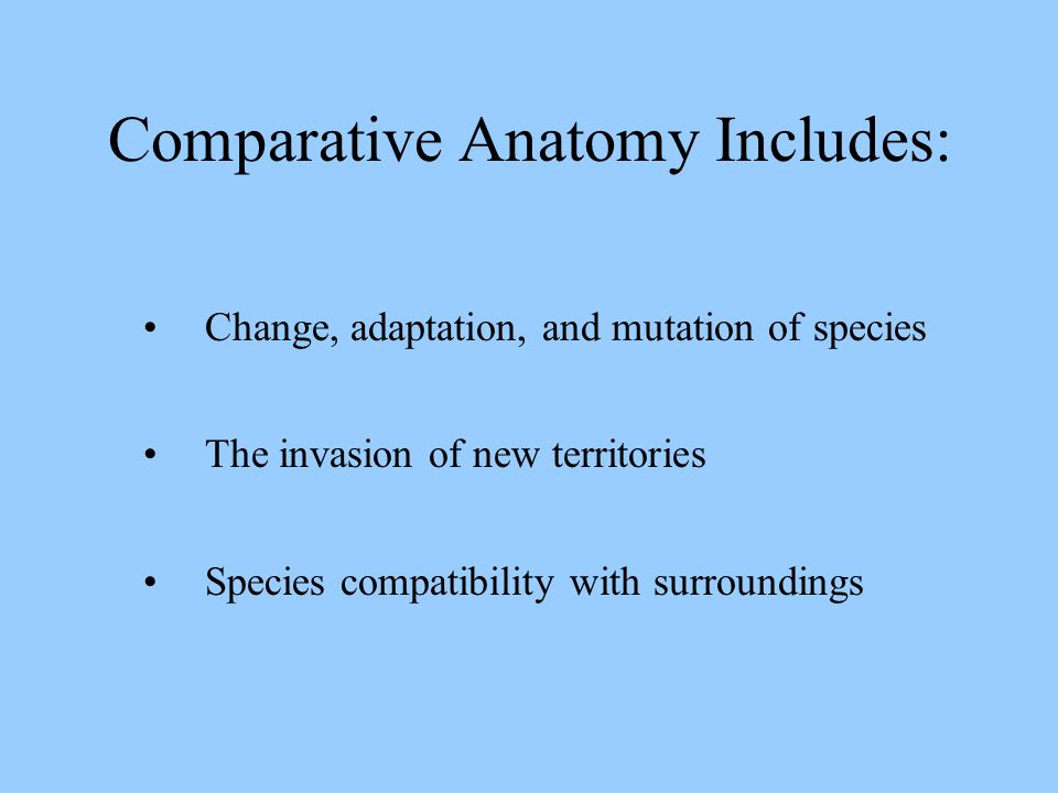 Comparative Anatomy Includes: Change, adaptation, and mutation of species The invasion of new territories Species compatibility with surroundings