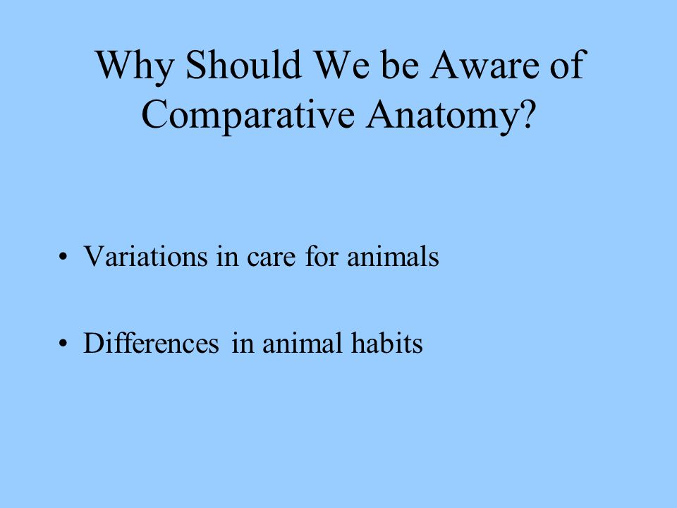Why Should We be Aware of Comparative Anatomy.