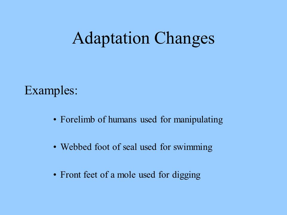 Adaptation Changes Examples: Forelimb of humans used for manipulating Webbed foot of seal used for swimming Front feet of a mole used for digging