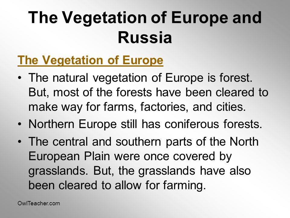 OwlTeacher.com The Vegetation of Europe and Russia The Vegetation of Europe The natural vegetation of Europe is forest.