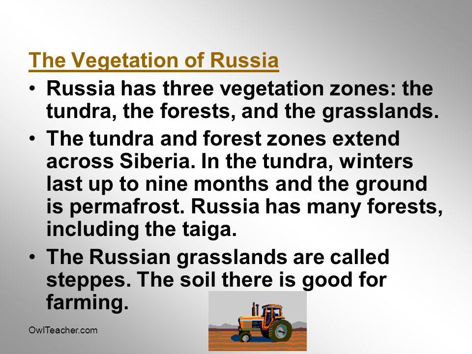 OwlTeacher.com The Vegetation of Russia Russia has three vegetation zones: the tundra, the forests, and the grasslands. The tundra and forest zones ex