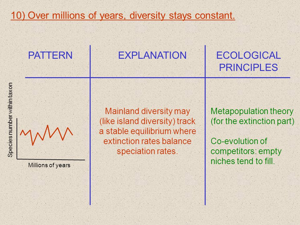 10) Over millions of years, diversity stays constant.