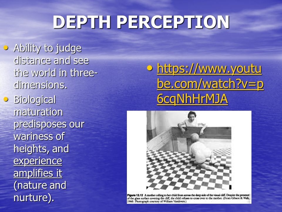 DEPTH PERCEPTION Ability to judge distance and see the world in three- dimensions.