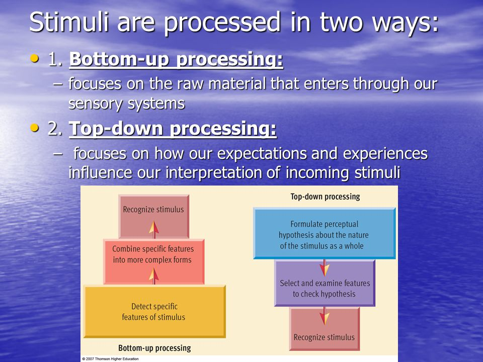 Stimuli are processed in two ways: 1.Bottom-up processing: 1.