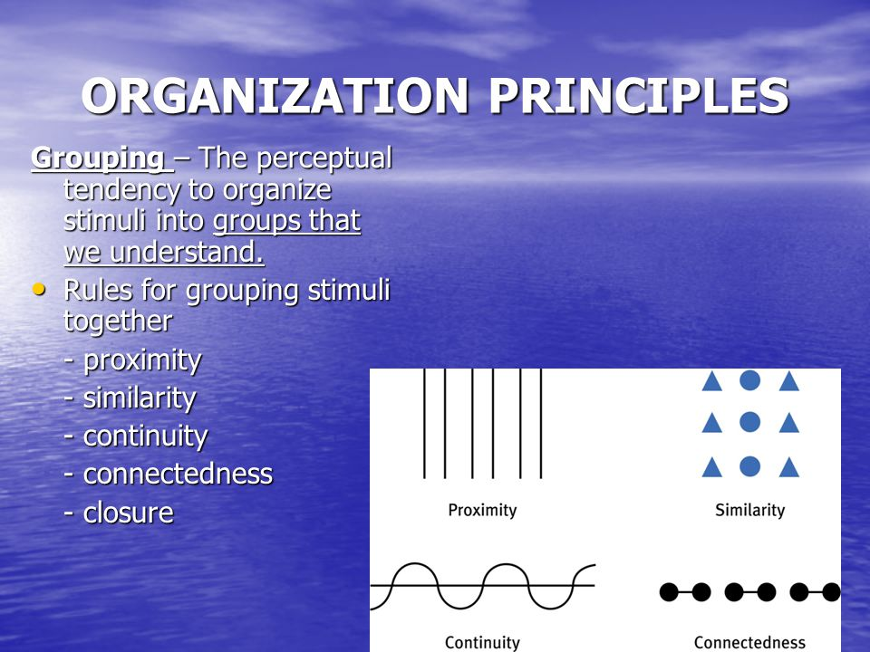 ORGANIZATION PRINCIPLES Grouping – The perceptual tendency to organize stimuli into groups that we understand.