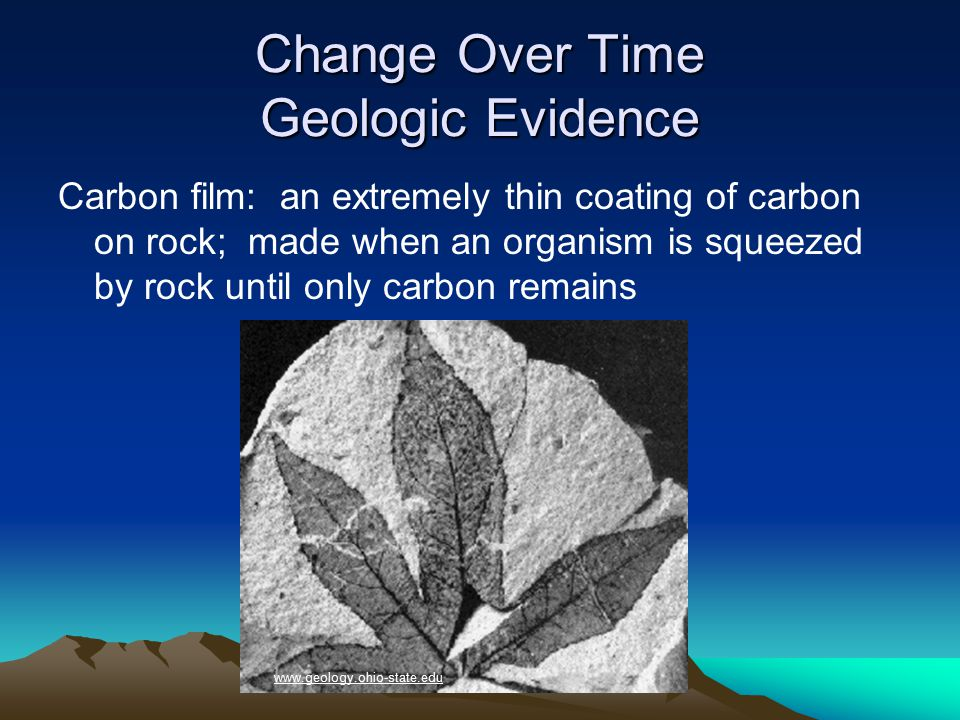 Change Over Time Relative Dating The fossils in layer 3 are relatively the same age.