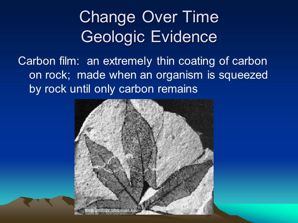96 Paleozoic Era Biological Changes Simple amphibians then reptiles evolve animals.howstuffworks.com