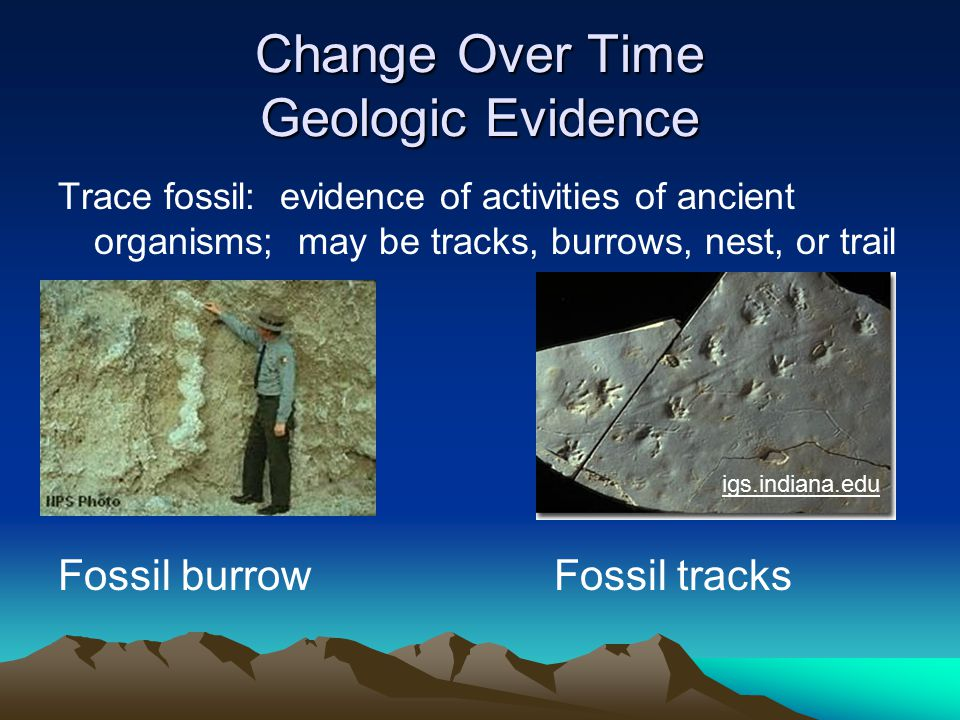 ESSENTIAL QUESTION #13 How has the distribution of living things changed over time.