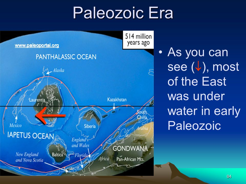 84 Paleozoic Era As you can see (  ), most of the East was under water in early Paleozoic  www.paleoportal.org
