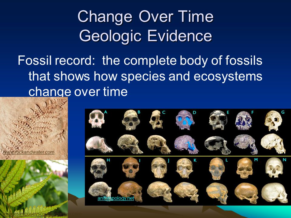 Change Over Time Geologic Evidence How do fossils give us the age of organisms that lived in the past.