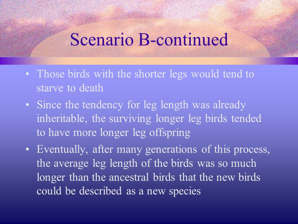 Scenario B-continued Those birds with the shorter legs would tend to starve to death Since the tendency for leg length was already inheritable, the su
