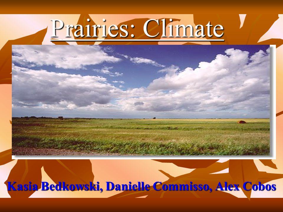 Prairies: Climate Kasia Bedkowski, Danielle Commisso, Alex Cobos