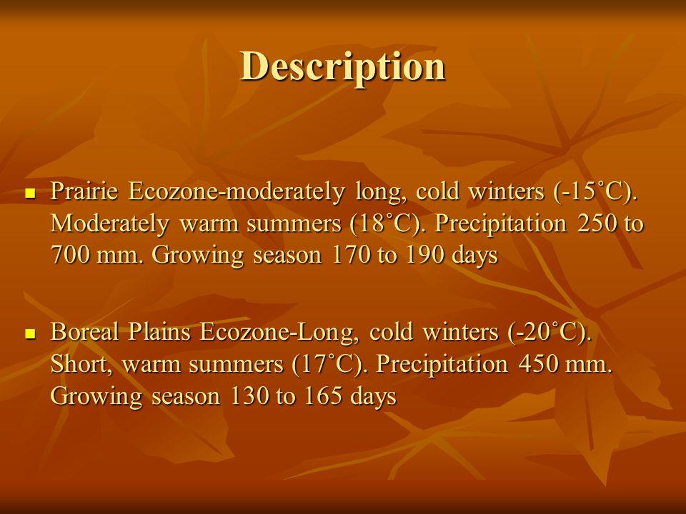 Description Prairie Ecozone-moderately long, cold winters (-15˚C).