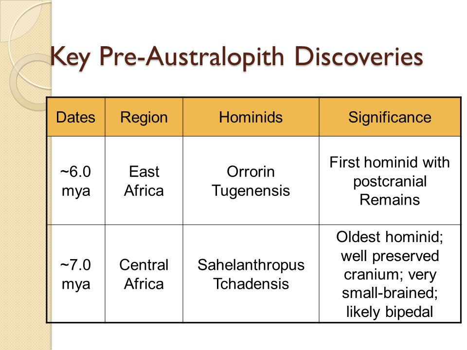 Key Pre-Australopith Discoveries DatesRegionHominidsSignificance ~6.0 mya East Africa Orrorin Tugenensis First hominid with postcranial Remains ~7.0 mya Central Africa Sahelanthropus Tchadensis Oldest hominid; well preserved cranium; very small-brained; likely bipedal