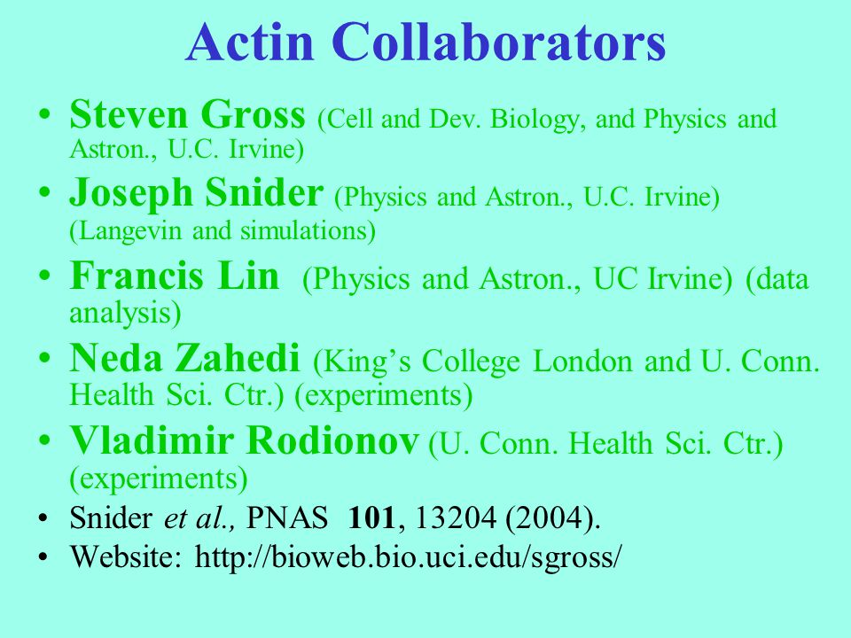 Actin Collaborators Steven Gross (Cell and Dev. Biology, and Physics and Astron., U.C. Irvine) Joseph Snider (Physics and Astron., U.C. Irvine) (Lange