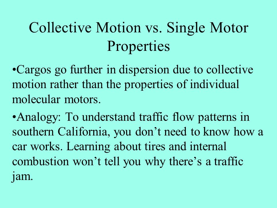 Collective Motion vs. Single Motor Properties Cargos go further in dispersion due to collective motion rather than the properties of individual molecu