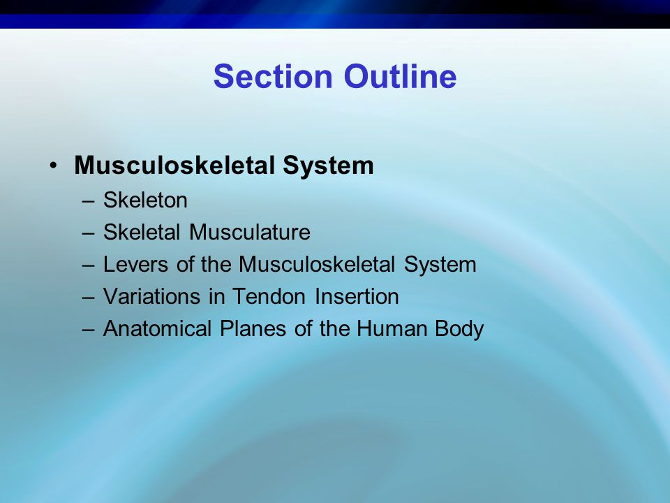 Key Terms anatomy: The study of components that make up the musculoskeletal machine. biomechanics: The mechanisms through which these components interact to create movement.