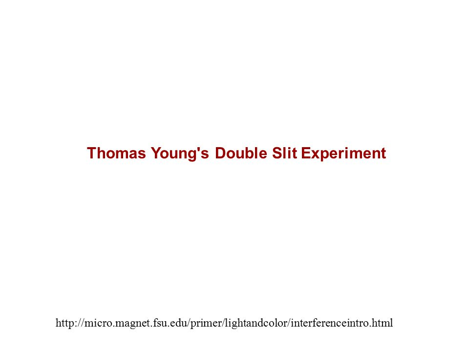 http://micro.magnet.fsu.edu/primer/lightandcolor/interferenceintro.html Thomas Young's Double Slit Experiment