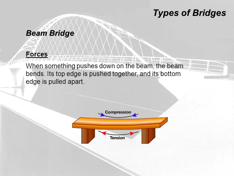 Forces When something pushes down on the beam, the beam bends. Its top edge is pushed together, and its bottom edge is pulled apart. Types of Bridges