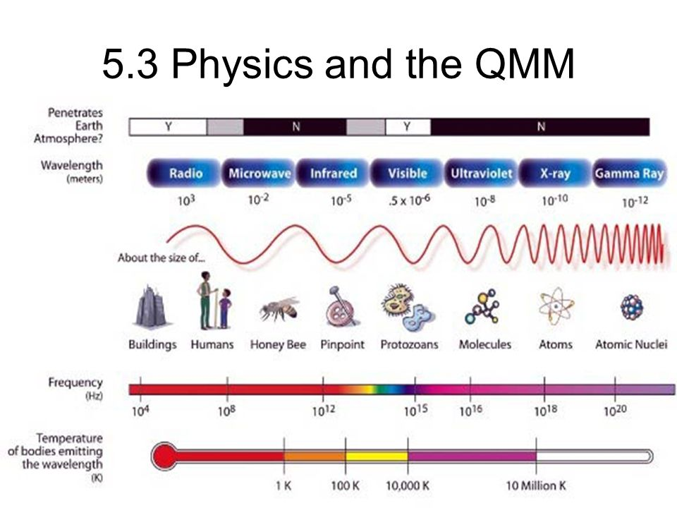 5.3 Physics and the QMM