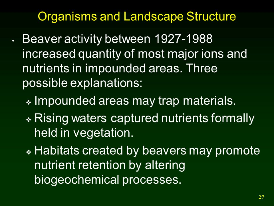 27 Organisms and Landscape Structure Beaver activity between 1927-1988 increased quantity of most major ions and nutrients in impounded areas. Three p