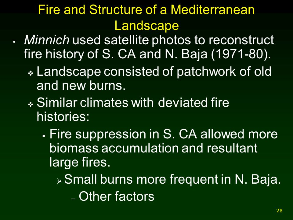 28 Fire and Structure of a Mediterranean Landscape Minnich used satellite photos to reconstruct fire history of S. CA and N. Baja (1971-80).  Landsca