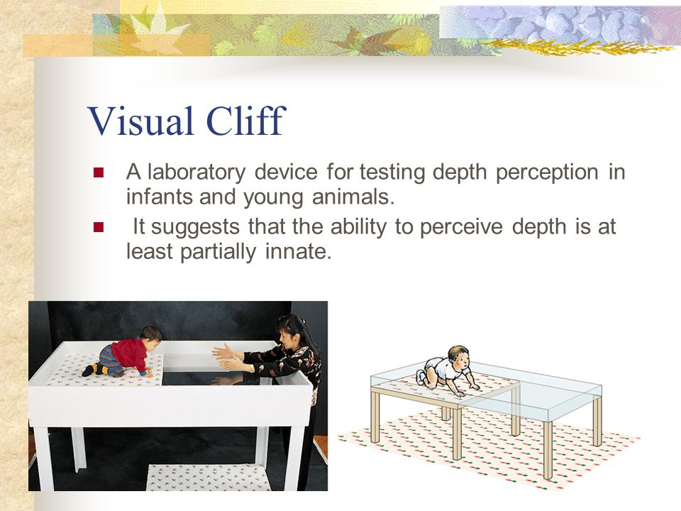 Visual Cliff A laboratory device for testing depth perception in infants and young animals. It suggests that the ability to perceive depth is at least