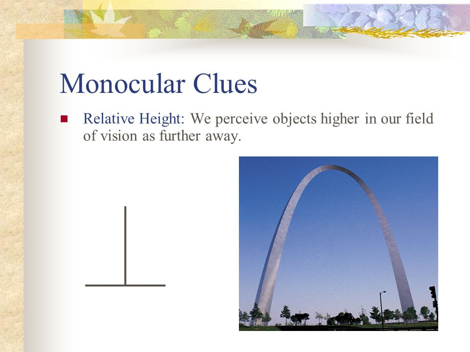 Monocular Clues Relative Height: We perceive objects higher in our field of vision as further away.