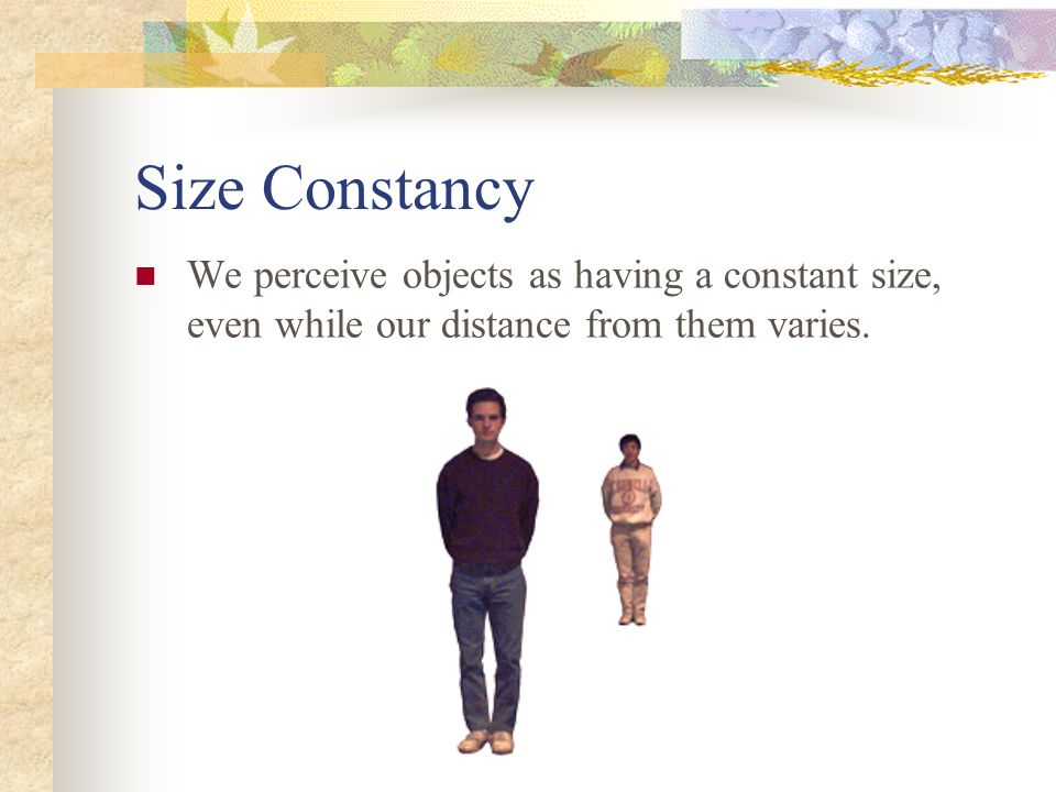 Size Constancy We perceive objects as having a constant size, even while our distance from them varies.