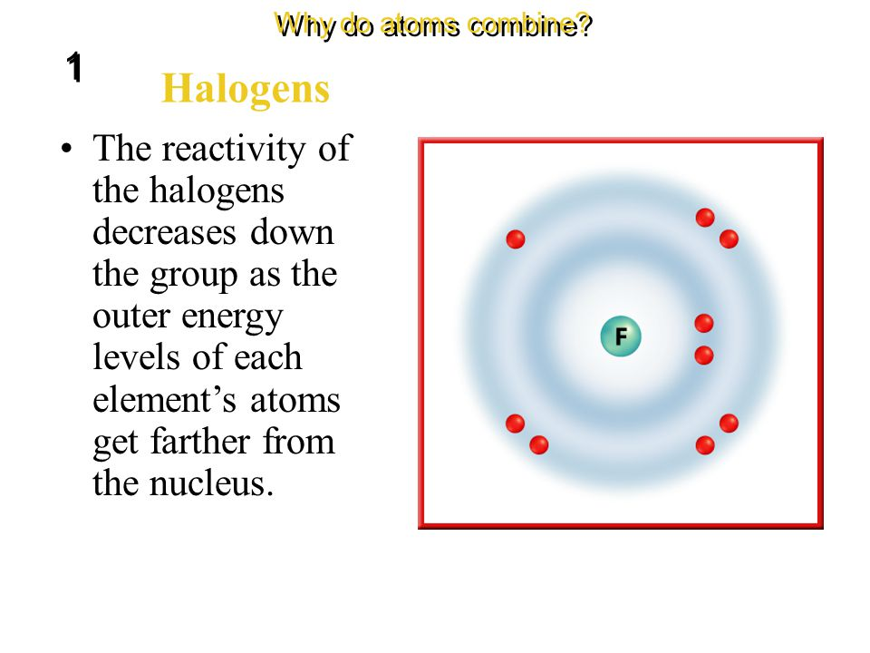 The elements in Group 17 are called the halogens. Halogens Why do atoms combine? 1 1 Fluorine is the most reactive of the halogens because its outer e