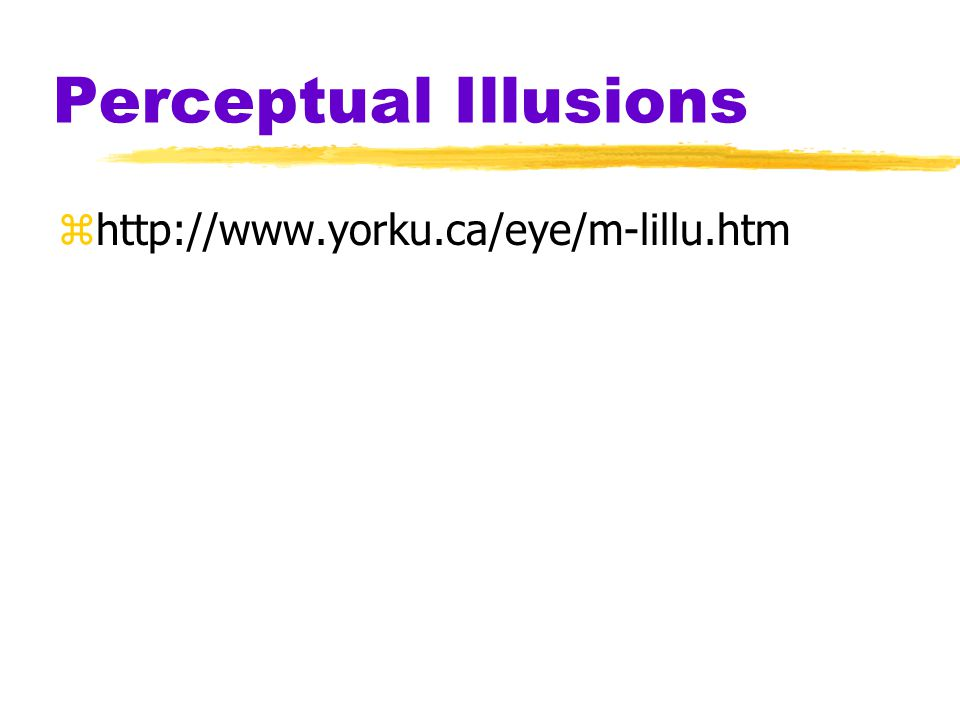 Objectives 1.Understand how illusions help us understand perception 2.Understand perceptual organization principles