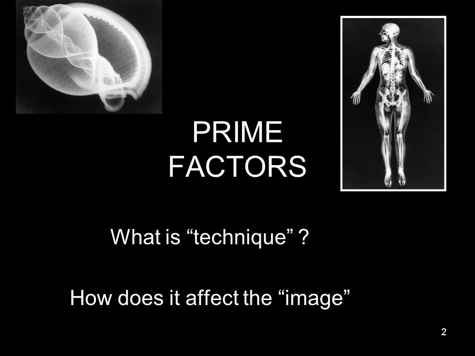 PRIME FACTORS What is technique ? How does it affect the image 2