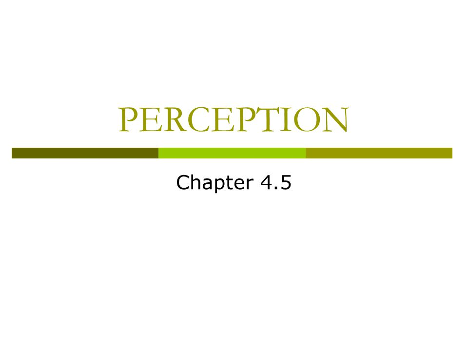 PERCEPTION Chapter 4.5