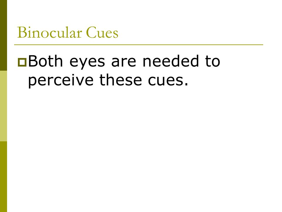 Binocular Cues  Both eyes are needed to perceive these cues.