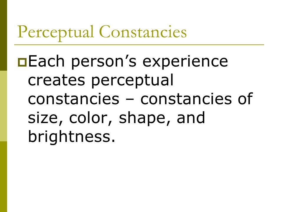 Perceptual Constancies  Each person's experience creates perceptual constancies – constancies of size, color, shape, and brightness.