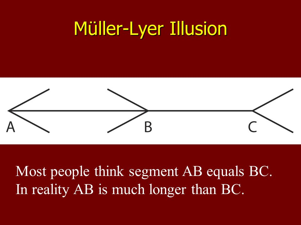 Most people think segment AB equals BC. In reality AB is much longer than BC.