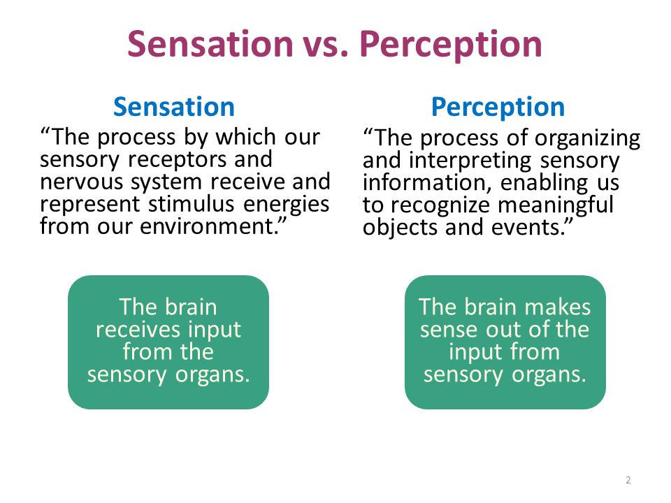 "Sensation vs. Perception ""The process by which our sensory receptors and nervous system receive and represent stimulus energies from our environment."""