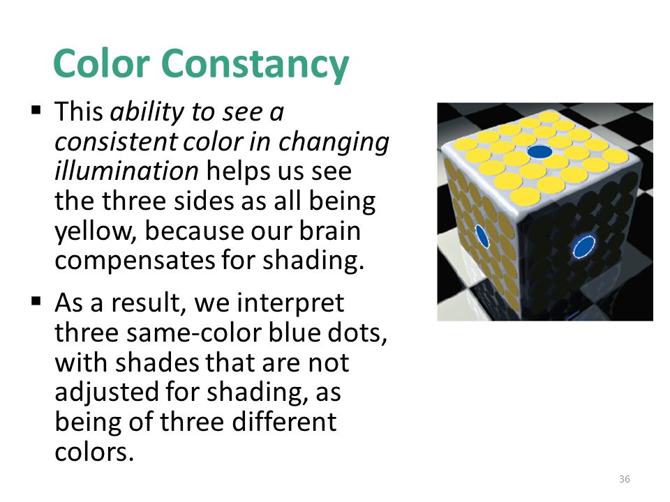Color Constancy  This ability to see a consistent color in changing illumination helps us see the three sides as all being yellow, because our brain